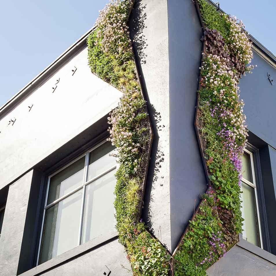 Cedar alley living wall 1000 green facade living wall