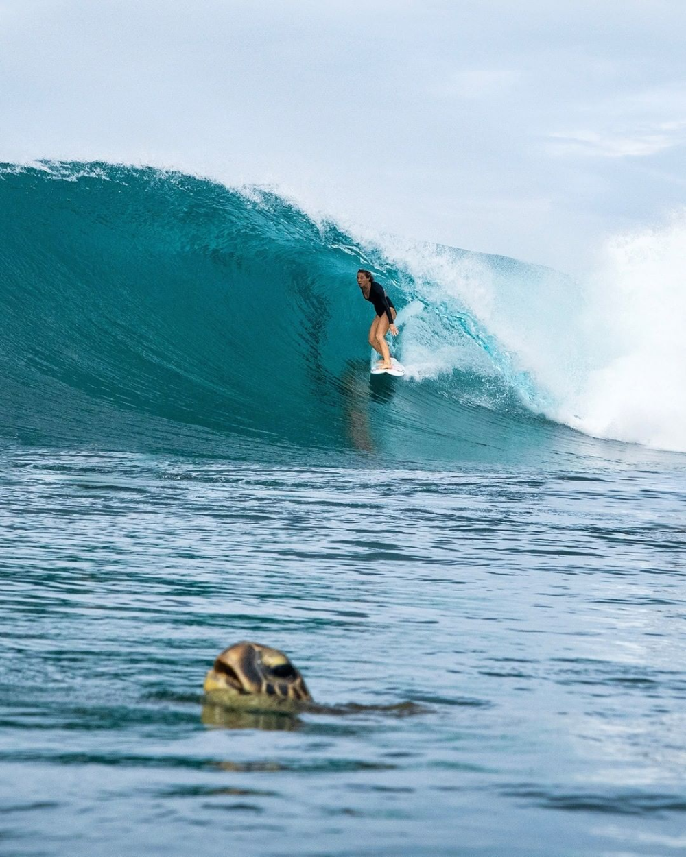Pin By Izzy Poole On Misc In 2020 World Surf World Surf League Surfing Photography