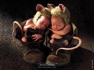 anne geddes baby pictures -I AM TERRIFIED of MICE!! but, if they were ALL like these two little cuties... I would have a MILLION of them!