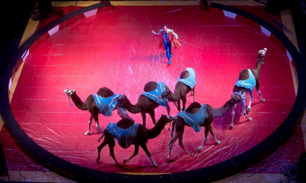 Big top circus big top big top circus baraboo
