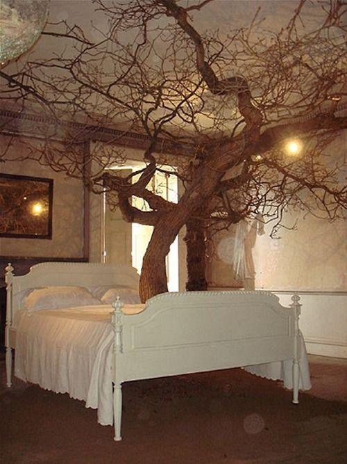 Tree Bedroom... | Sanctuary | Pinterest | Tree bedroom, Trees and ...