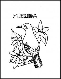 Coloring Sheets State Birds Floweres