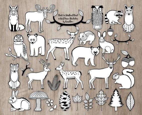 Black White Animal Clipart Perfect For Diy Coloring Books Coloring Activities Or Scrapbookin Animals Black And White Woodland Illustration Woodland Clipart