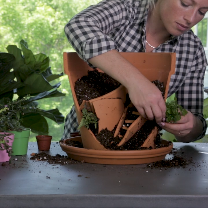 How to Make an Adorable DIY Broken Pot Fairy Garden