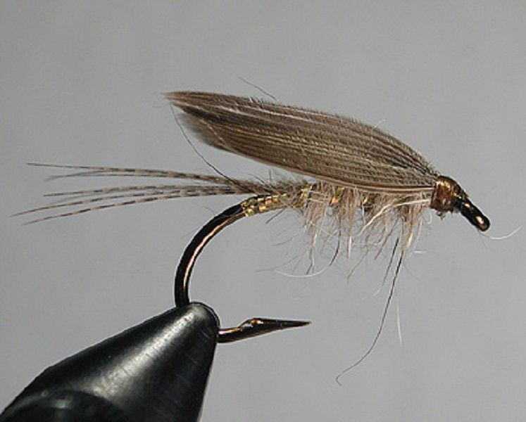 fly fishing flies - 747×600