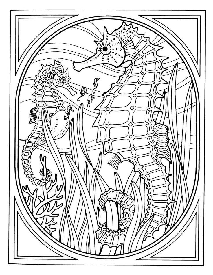 Sea Animals Coloring Pages For Kids - http://fullcoloring.com/sea ...