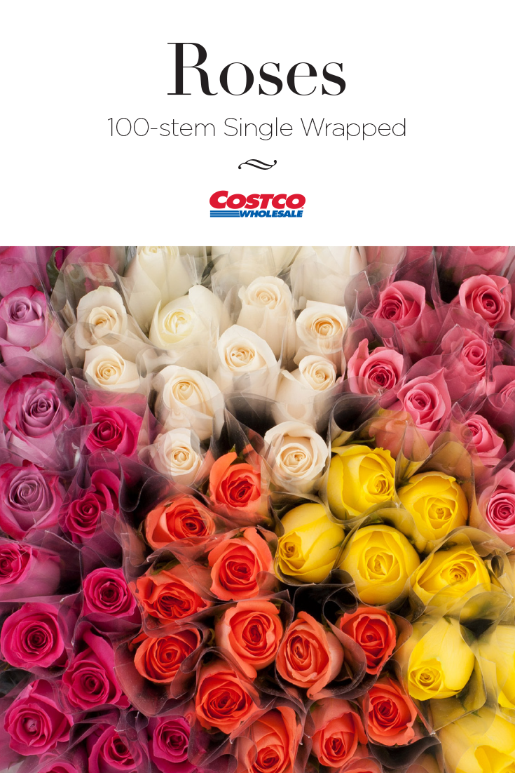 7a87248e08cf This bulk container of individually wrapped roses is perfect for ...