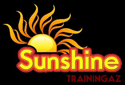 Sunshine Logo Design Sunshine Logos