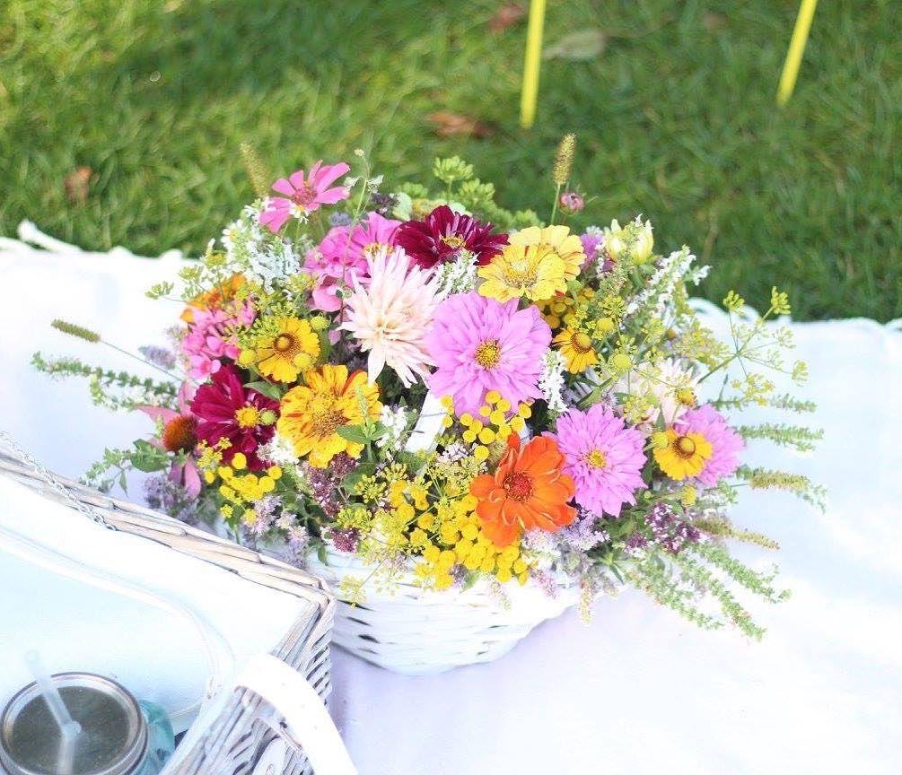 Príjemný začiatok týždňa prajeme  #kvetysilvia #kvetinarstvo #kvety #telerano #love #instagood #cute #follow #photooftheday #beautiful #tagsforlikes #happy #like4like #nature #style #nofilter #pretty #flowers #design #awesome #tvmarkiza #home #handmade #flower #summer #bride #hot #floral
