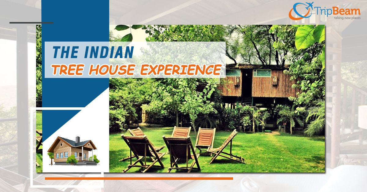8 Best Tree-house Experiences in India!  India gives travellers of all shapes and sizes many unique experiences. India's amazing tree houses take you on a different level. Let's look at some of India's best tree houses to relax. To read more click the link...  #TreeHousesInIndia #luxury #treehouseexperience #ChristmasIsComing #travelmore #traveldestinations #CanadatoIndiaFlights #TravelDeals #CandatoIndia #Tripbeam