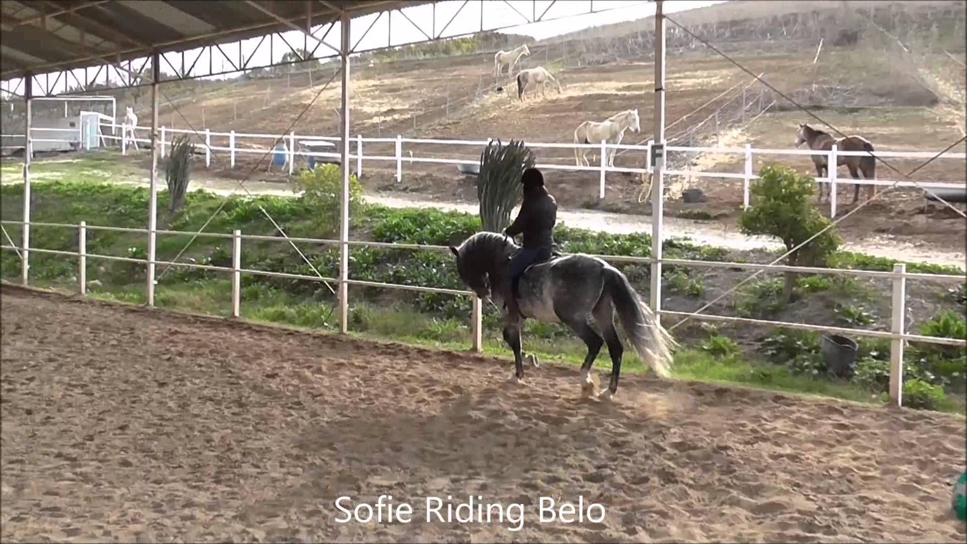 Sofie riding Belo