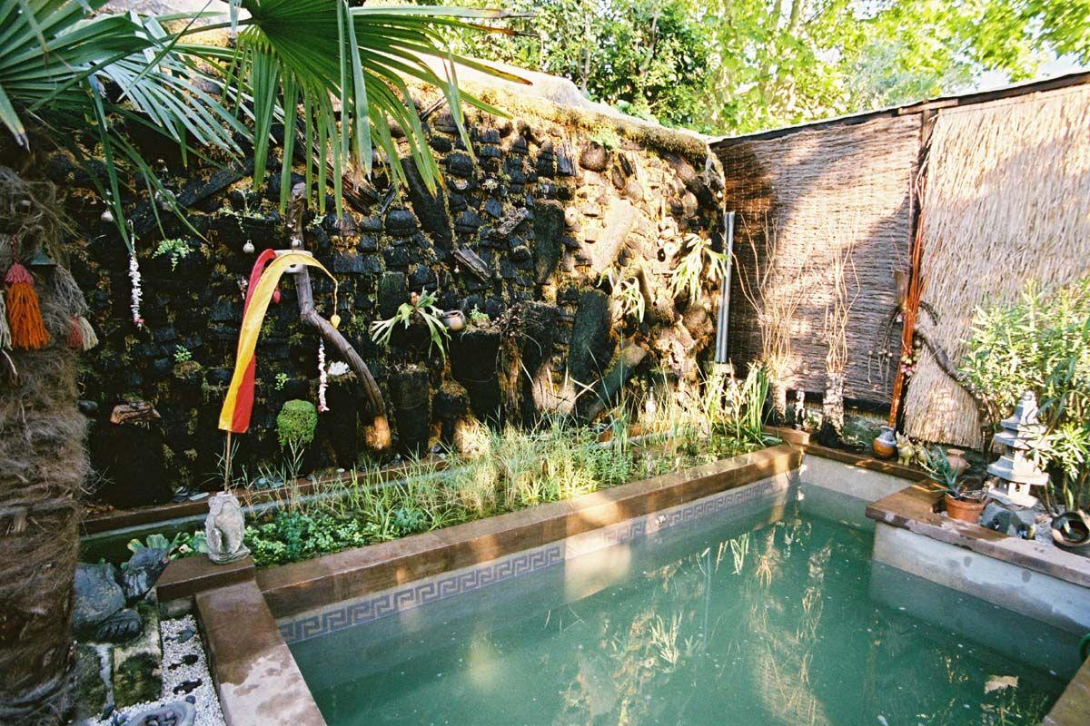 Bassin Et Mur Vegetal En Troncs De Fougeres Arborescente Miomundo Uzes France Natural Pool Pool Uzes