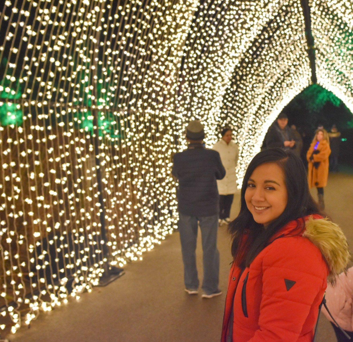 Our Visit to Lightscape at Chicago Botanic Garden