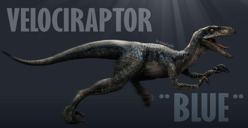 blue raptor jurassic world velociraptor blue by manusaurio