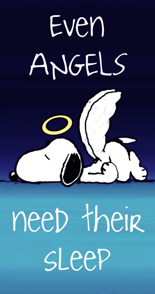 Even Angels Need Their Sleep Snoopy The Snoop Schöne