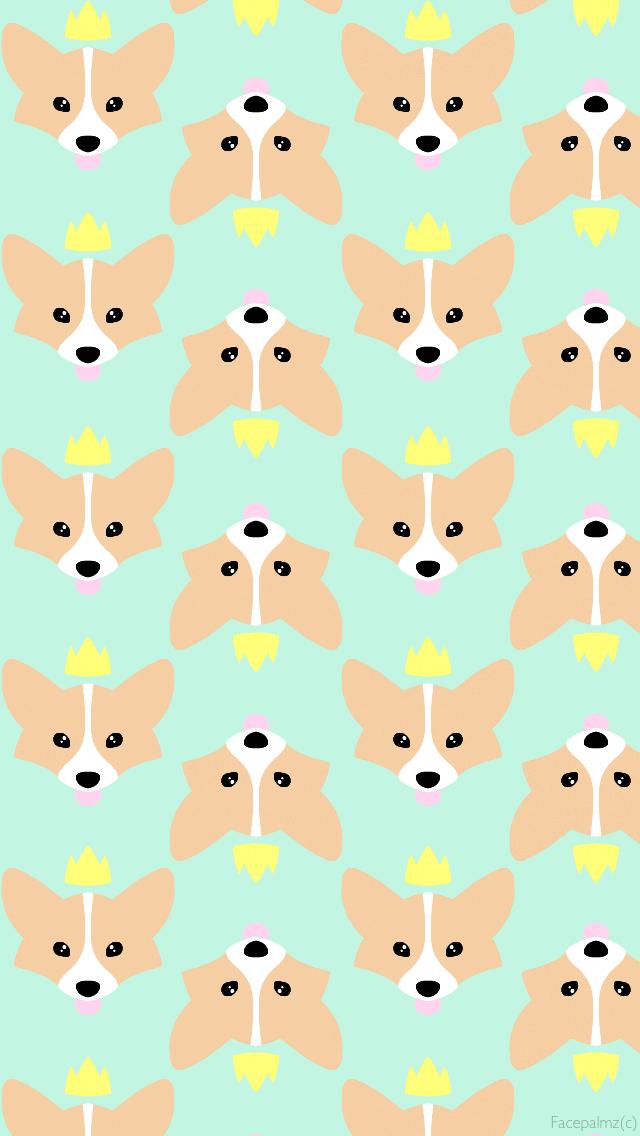Wallpaper Dog wallpaper, wallpaper, Dog