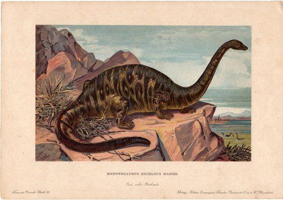 1902 dinosaur brontosaurus rare antique print