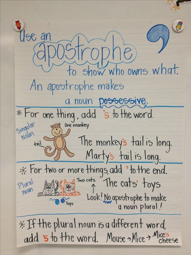 possessive nouns anchor chart singular and plural nouns - Yahoo - anchor charts