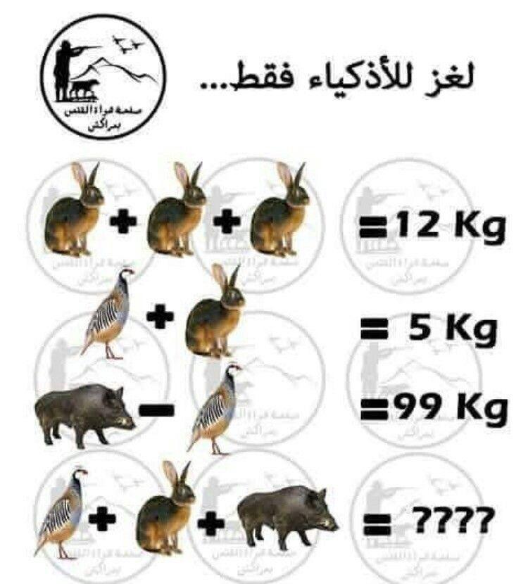 لغز للأذكياء فقط Harrismith World Math