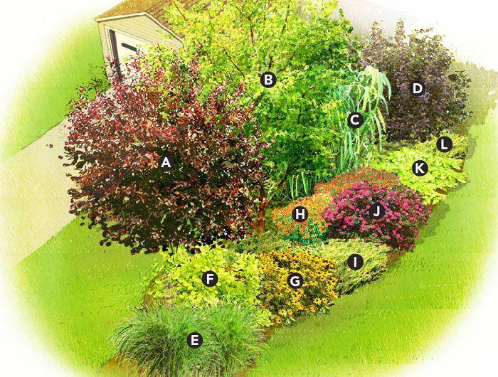 Quick Privacy Garden Plan Privacy Landscaping Garden Planning Garden Shrubs