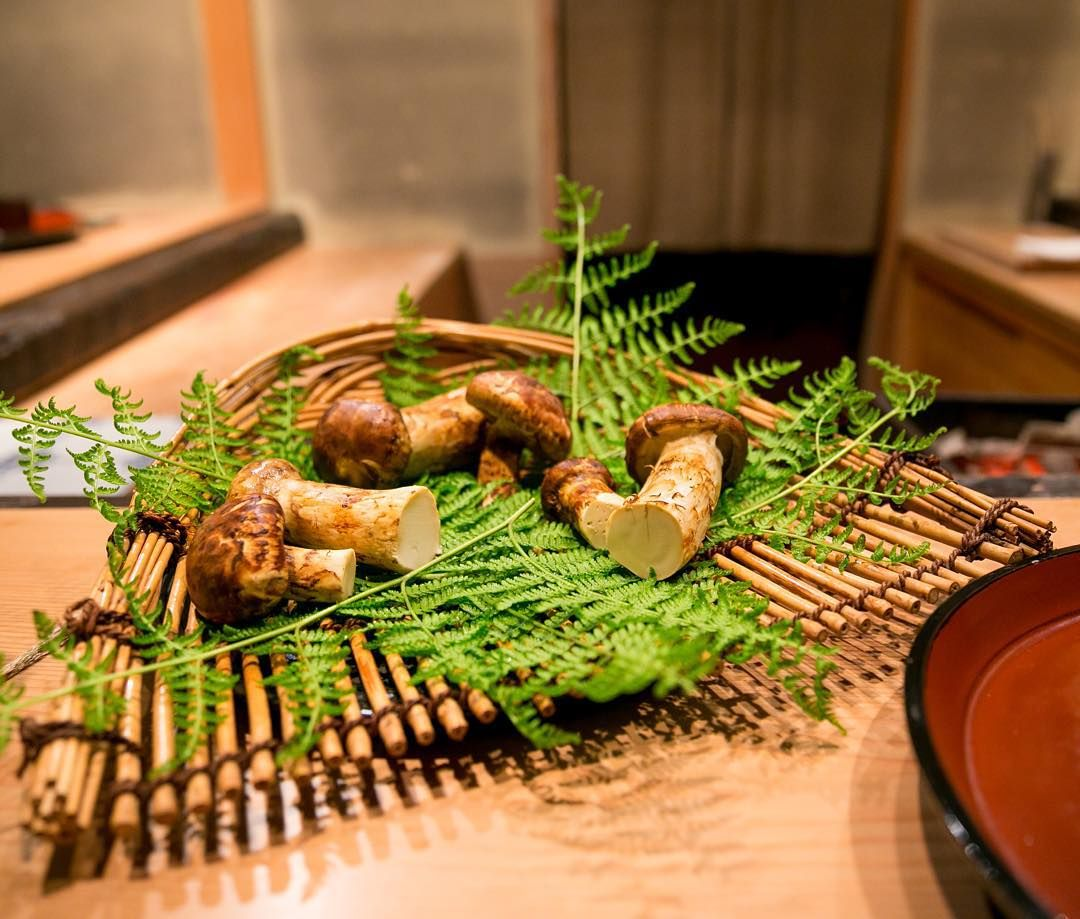Display of Matsutake mushrooms from Nagano _ Miyamasou Kyoto 美山荘…