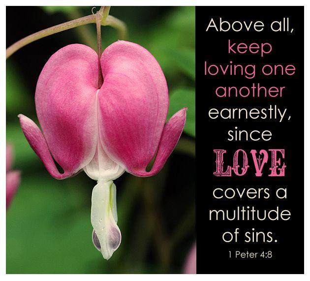 Thanks Jess At Lovely Lovely Things I Love Bleeding Heart Flowers Too Verse For Valentine S 1 Peter 4 8 Biblical Encouragement 1 Peter Bible Prayers