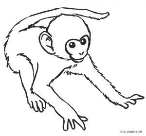 Free Printable Monkey Coloring Pages For Kids Cool2bkids Crafts