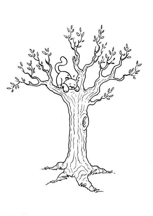 Malvorlage Katze im Baum. Bilder für Schule und Unterricht: Katze im ...