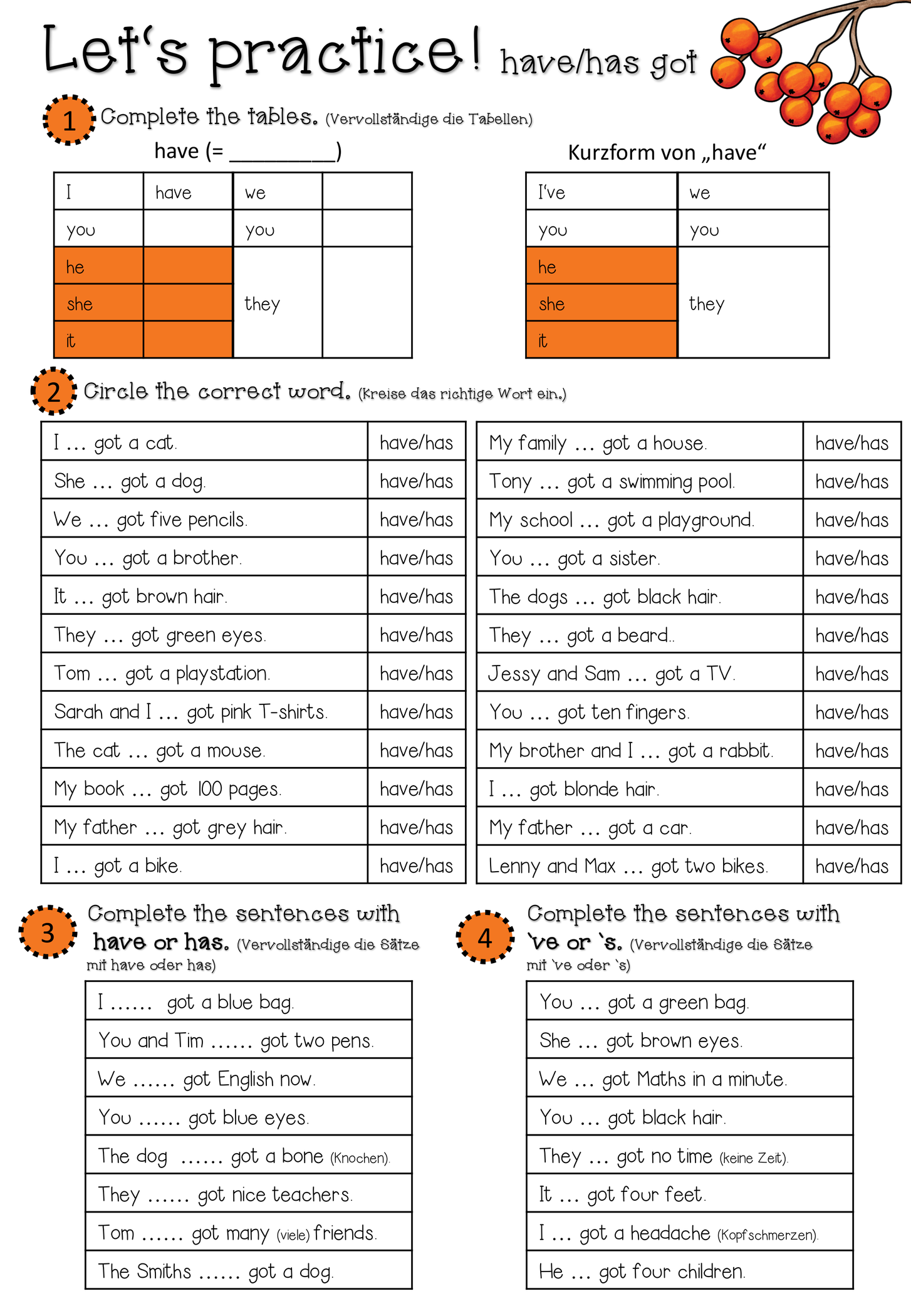 Have Has Got Worksheet Positives And Negatives 2 Seiten