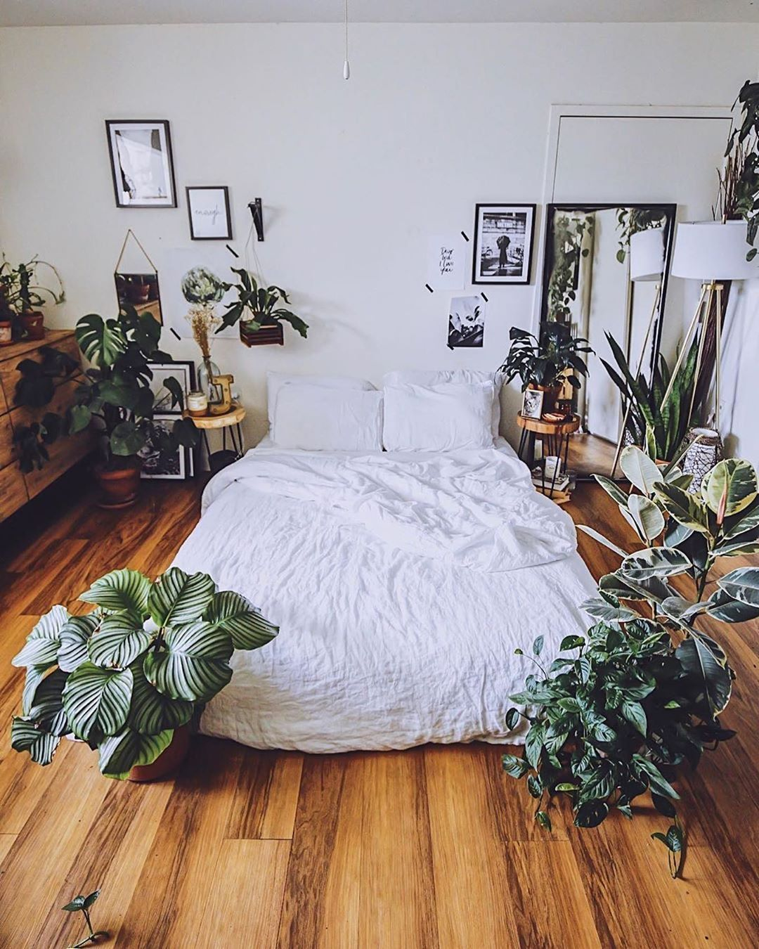 "Photo of Plants Spark Joy on Instagram: ""Plants can help you sleep 💤 better at night. Do y'all agree? 🤔🌱✨ #plantssparkjoy  via @jungleinaroom"""