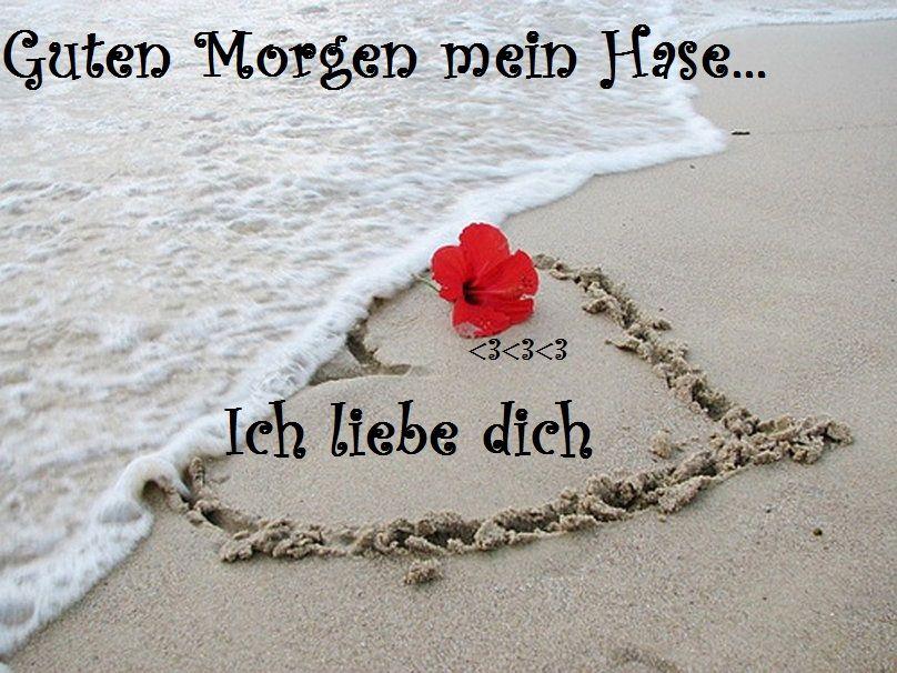 Guten Morgen Mein Geliebter Hase Ich Wunsche Dir Einen Wunderschonen Tag Hab Viel Spass Ich Werde An Schone Liebe Guten Morgen Schatz Beziehungen Liebe