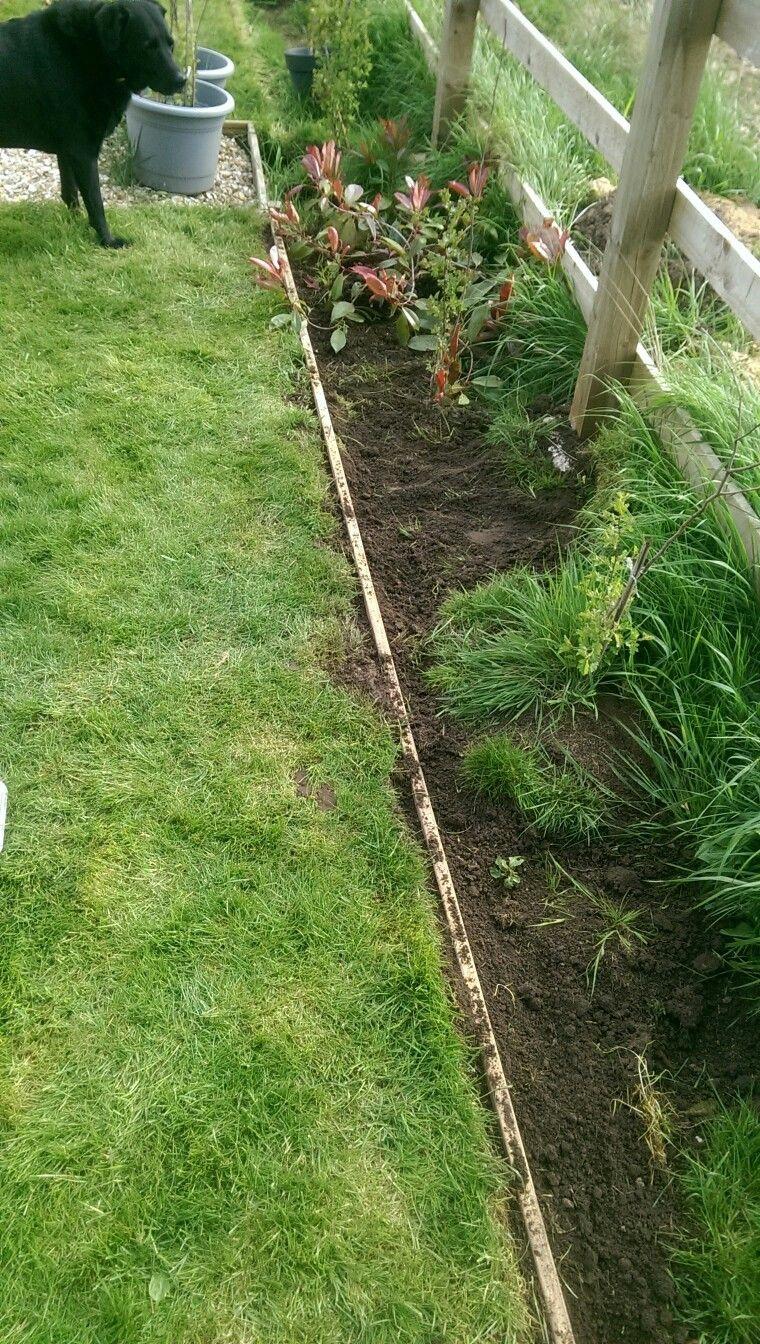 Garden Border With Pallets Wood Garden Edging Amazing Gardens Wooden Garden