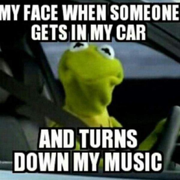 Kermit Race Car Driver