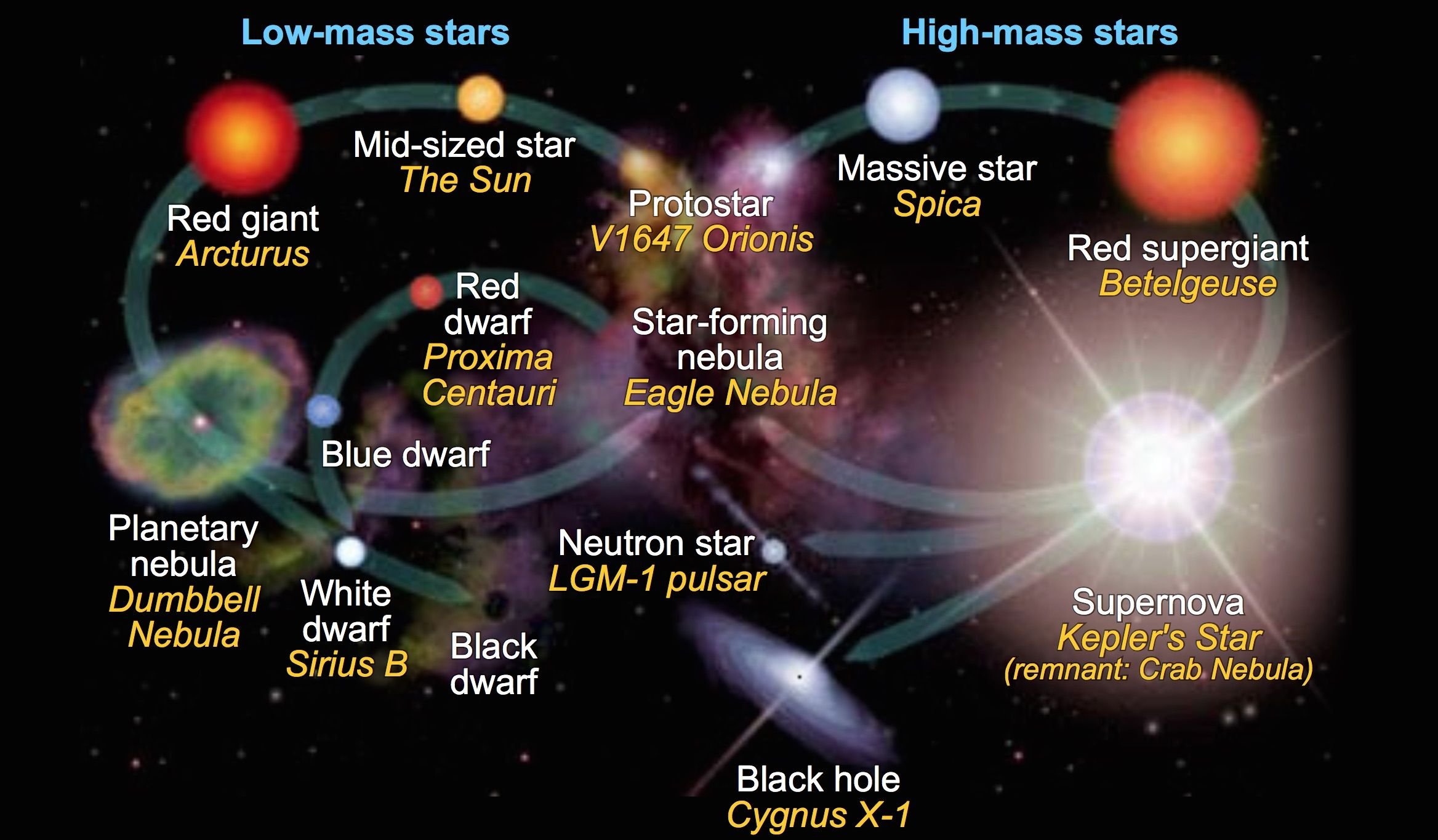 The Stellar Evolution Of Stars In With Images