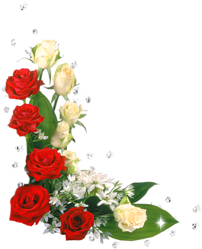 Pin De Jane Reis En Cicekler Bordes Para Hojas Flores Bonitas Flores
