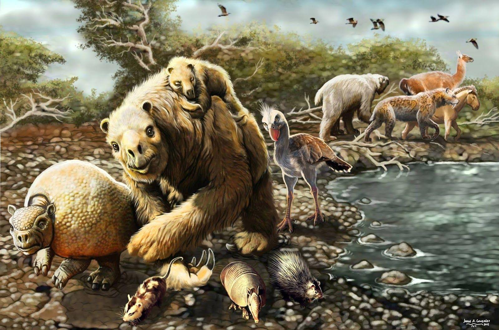 веков был картинки с древними животными рецепте