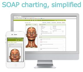 SOAP Vault : Online SOAP notes charting software for massage ...