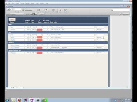 Inventory Database in Filemaker - YouTube webGL Pinterest - how to create an inventory database