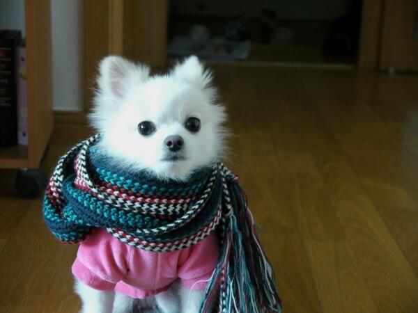 @미미 ♡: Must be winter.