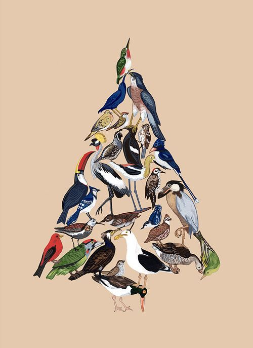 Love this bird illustration