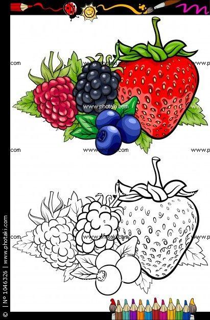 Fotos frutas de baya ilustración para libro para colorear