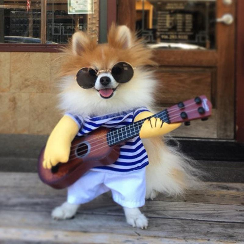 Cute Little Rockstar With Guitar Funny Costume For Dog Cute
