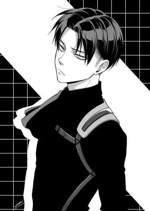 Levi Anime Snk Aot Levi Attack On Titan Levi Attack On Titan Anime Captain Levi