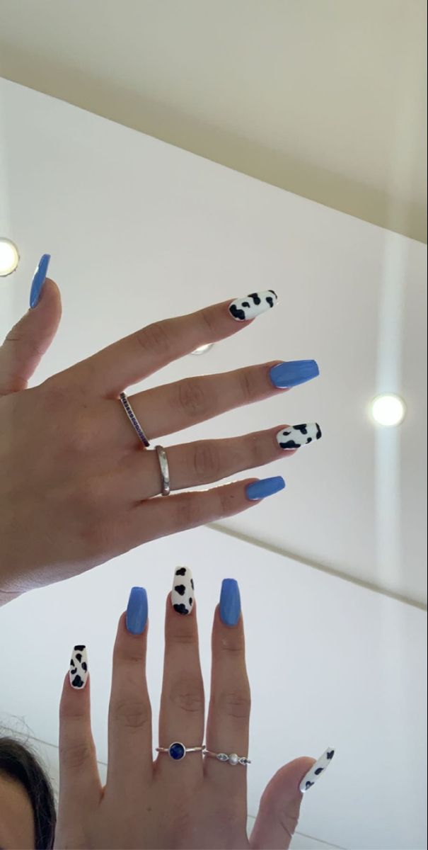 Acrylics Cow Print Nails Blue Cow Print Nails In 2020 Cow Nails Short Acrylic Nails Designs Acylic Nails
