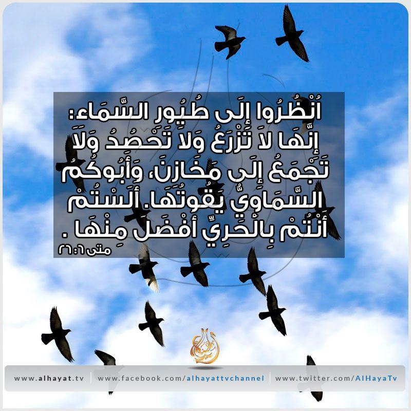 Pin On Arabic Bible Verses