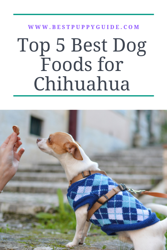 Top 5 Best Dog Food For Chihuahua Personal Picks And Buying Guide Best Puppy Food Best Dog Food Chihuahua