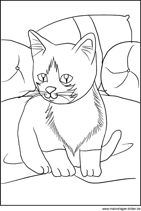 Kostenlose Malvorlage Malvorlage Katze Kostenlose Ausmalbilder Zum Ausdrucken Vorlage