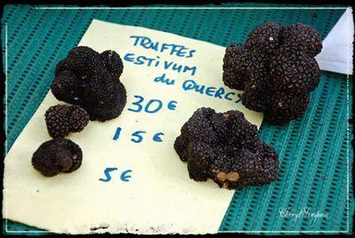 Farmers-Market-22 - truffles