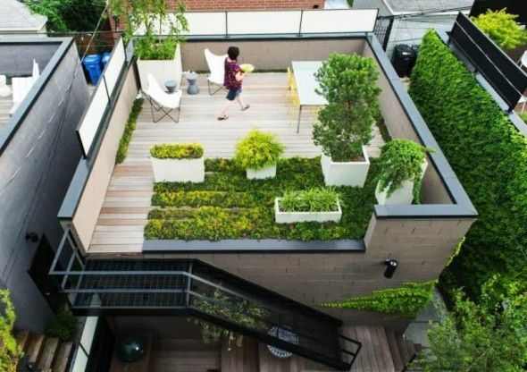 How to Build a Rooftop Garden Appropriately | Decorating Design Ideas