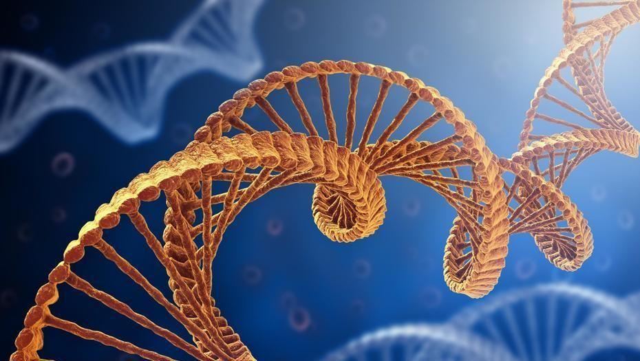 """Epigenética: conocé cómo podés """"alterar"""" tus genes"""